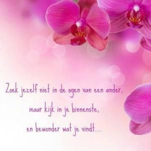 Zoek jezelf niet in de ogen van anderen, maar kijk in je binnenste en bewonder wat je vindt. www.coachingmetsanne.com life coach Den Haag